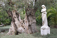 Old olive tree. Sculpture of maiden. Bacalhoa Vinhos, Azeitao, Portugal