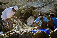 local fishermen claning their nets and picking up the catch of the day, oman, arabia