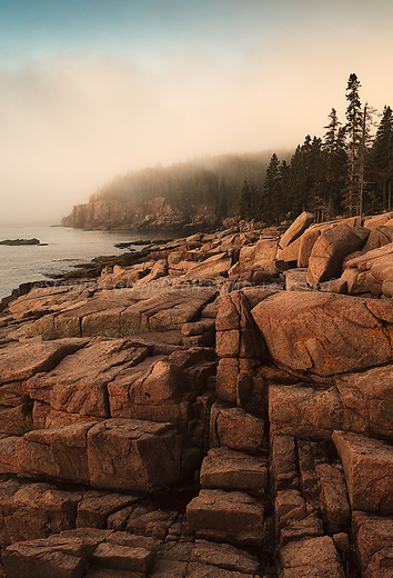 Otter Cliiffs in a fog at sunrise in Acadia National Park.