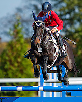 Syd Kent, with rider Jan Byyny  (USA), competes during the Stadium Jumping test during the Fair Hill International at Fair Hill Natural Resources Area in Fair Hill, Maryland on October 21, 2012.