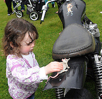 1-6-2014: Sophie Hussey from Killarney admires the 'Best Rat' in the Harley Davidson motorbike class at Ireland Bikefest in Killarney on Sunday.<br /> Photo: Don MacMonagle <br /> <br /> REPRO FREE PHOTO FROM IRELAND BIKEFEST
