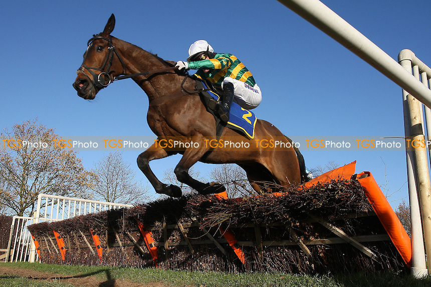 Hogan's Bridge ridden by A P McCoy in jumping action during the Hempton National Hunt Maiden Hurdle at Fakenham Racecourse, Norfolk - 12/12/11 - MANDATORY CREDIT: Gavin Ellis/TGSPHOTO - Self billing applies where appropriate - 0845 094 6026 - contact@tgsphoto.co.uk - NO UNPAID USE.