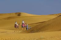Tourists riding camels into Thar Desert near Jodhpur, India.