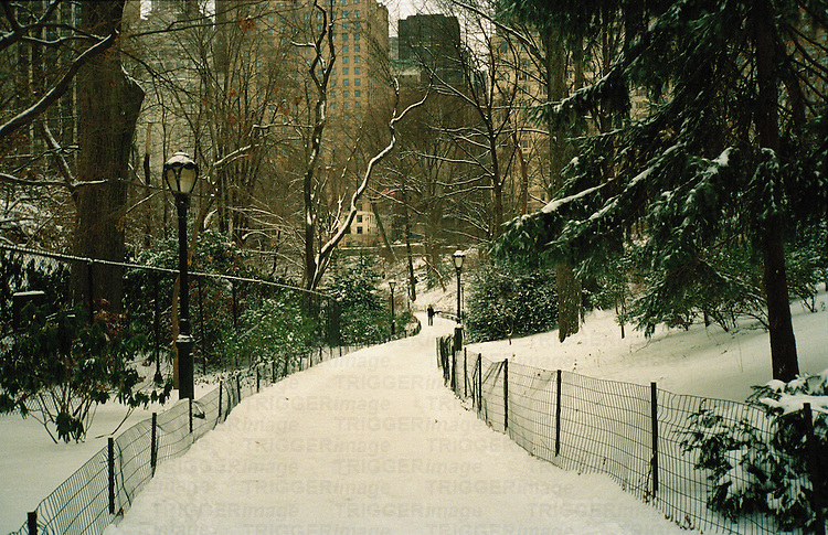 winter view of central park, new york