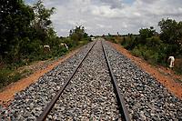 Battambang - Cambodia - June 2020<br /> - Original Bamboo Train