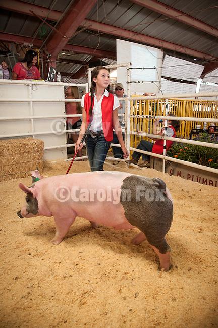 74th Amador County Fair, Plymouth, Calif...Junior Livestock Auction--hogs
