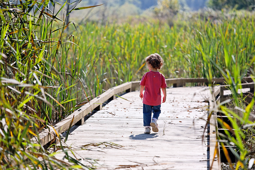 Girl walking on boardwalk trail through wetland, Spencer Island, Everett, Washington, USA