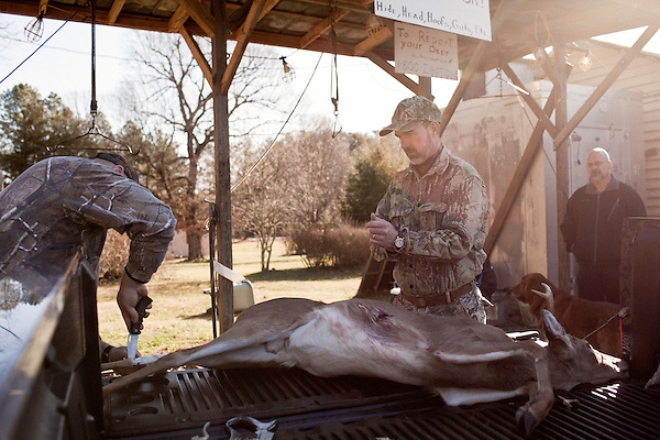 January 2, 2012. Chapel Hill, NC.. (left to right) Chris Mostiller and Boo Huskins, of Marion, NC, start skinning a buck on the racks out back of Norman's Deer Processing & Sausage Making. Hunters who bring deer for processing must skin and clean the deer before Norman takes it for curing and butchering.. Norman's Deer Processing & Sausage Making has been serving private customer's for over 20 years. Hunters bring their deer in to be processed into all cuts of venison and several types of sausage.