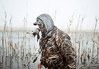 Pat Berggren (cq) carries a duck in his mouth after a kill during a hunting trip just off the duck-rich Platte River in Nebraska, Saturday, December 3, 2011...Photo by Matt Nager