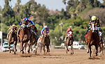 November 2, 2019 : Covfefe, ridden by Joel Rosario, wins the Breeders' Cup Filly & Mare Sprint on Breeders' Cup Championship Saturday at Santa Anita Park in Arcadia, California on November 2, 2019. Alex Evers/Eclipse Sportswire/Breeders' Cup/CSM