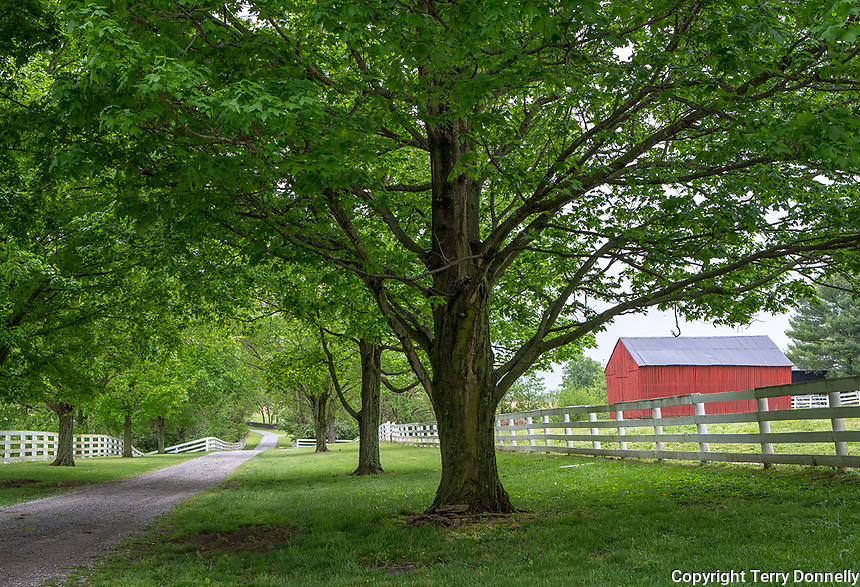 Harrodsburg, Kentucky:<br /> Views of The Shaker Village of Pleasant Hill