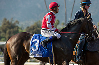 ARCADIA, CA  APRIL 7:  #3 Midnight Bisou, ridden by Mike Smith, in the post parade of the Santa Anita Oaks (Grade l) on April 7, 2018, at Santa Anita Park in Arcadia, Ca. (Photo by Casey Phillips/ Eclipse Sportswire/ Getty Images)