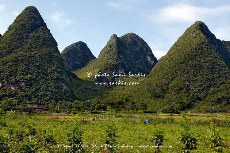 Limestone peaks and rice paddies in Yangshuo, Guangxi, China.