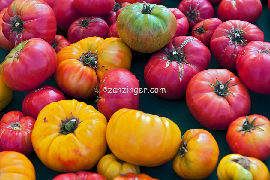 Heirloom, tomatoes, Yellow, Red, Green, open-pollinated (non-hybrid) heirloom cultivar, tomato.  Vegetables, Produce, Farmers Market, Farm-fresh