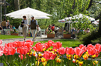 DEU, Deutschland, Baden-Wuerttemberg, Bodensee: Insel Mainau, Blumeninsel und groesste touristische Attraktion am Bodensee. Cafe Rothaus Seeterrassen mit Biergarten | DEU, Germany, Baden-Wuerttemberg, Lake Constance: Mainau Island, Flower Island and greatest tourist attraction at Lake Constance. Cafe Rothaus Seeterrassem with beer garden