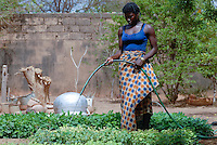 "Afrika Westafrika Burkina Faso .katholische Schwestern betreiben ein Heim fuer zwangsverheiratete Frauen in Boken , Frau bewaessert Gemuesegarten -  xagndaz | .Africa west-africa Burkina Faso aid project of catholic church for forced married women in Boken.  -  religion social issue  .| [ copyright (c) Joerg Boethling / agenda , Veroeffentlichung nur gegen Honorar und Belegexemplar an / publication only with royalties and copy to:  agenda PG   Rothestr. 66   Germany D-22765 Hamburg   ph. ++49 40 391 907 14   e-mail: boethling@agenda-fototext.de   www.agenda-fototext.de   Bank: Hamburger Sparkasse  BLZ 200 505 50  Kto. 1281 120 178   IBAN: DE96 2005 0550 1281 1201 78   BIC: ""HASPDEHH"" ,  WEITERE MOTIVE ZU DIESEM THEMA SIND VORHANDEN!! MORE PICTURES ON THIS SUBJECT AVAILABLE!! ] [#0,26,121#]"