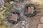 Foot hold traps used for catching and collaring Andean cats, Abra Granada, Andes, northwestern Argentina