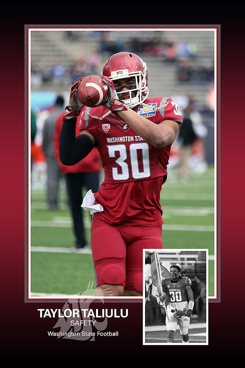 Memorabilia print for Taylor Taliulu from the 2015 Washington State football season in which the Cougs went 9-4, including a Sun Bowl victory over the Miami Hurricanes.