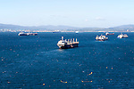 Oil cargo ships anchored in the bay between Algericas, Spain and Gibraltar, British terroritory in southern Europe