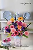 Marek, FLOWERS, BLUMEN, FLORES, photos+++++,PLMPMG1332,#f#