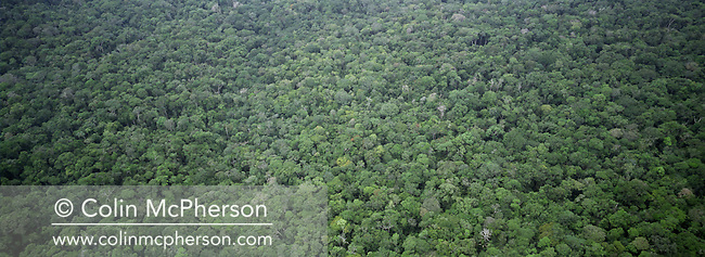 Arial photograph showing a section of rainforest threatened by drought and deforestation. Many small towns and villages along the Amazon and Rio Negro rivers were cut off from river transport and faced food and drinking water shortages. Scientists have pinpointed climate change as a factor as the Amazon basin suffered its worst drought in 60 years with record-low rainfall recorded..