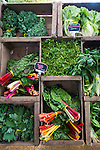 Display of fresh, organic leafy green vegetables at the Portland, Oregon Farmers' Market at Portland State University, the North Park Blocks