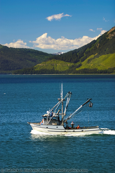Commercial fishing boat near Hoonah, Alaska in the bay of Chichagof island, distant hills exhibit clearcut logging in the Tongass National Forest.