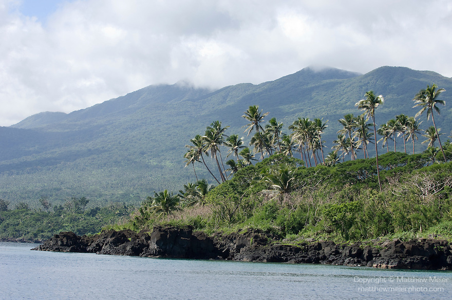 Taveuni, Fiji; coconut palm trees grow in groves above the black lava rocks along the shoreline of Taveuni Island