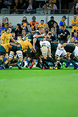 9th September 2017, nib Stadium, Perth, Australia; Supersport Rugby Championship, Australia versus South Africa; Pieter-Steph du Toit of the South African Springboks stands up in the scrum during the second half