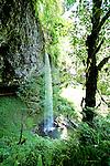 Shellburg Falls in summertime