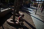 16 septiembre 2015. Ceti-Melilla <br /> Un millar de familias sirias, la mayor&iacute;a ni&ntilde;os, esperan en Nador y Beni Enzar (Marruecos) para poder cruzar a Melilla. La ONG Save the Children exige al Gobierno espa&ntilde;ol que tome un papel activo en la crisis de refugiados y facilite el acceso de estas familias a trav&eacute;s de la expedici&oacute;n de visados humanitarios en el consulado espa&ntilde;ol de Nador. Save the Children ha comprobado adem&aacute;s c&oacute;mo muchas de estas familias se han visto forzadas a separarse porque, en el momento del cierre de la frontera, unos miembros se han quedado en un lado o en el otro. Para poder cruzar el control, las mafias se aprovechan de la desesperaci&oacute;n de los sirios y les ofrecen pasaportes marroqu&iacute;es al precio de 1.000 euros. Diversas familias han explicado a Save the Children c&oacute;mo est&aacute;n endeudadas y han tenido que elegir qui&eacute;n pasa primero de sus miembros a Melilla, dejando a otros en Nador.<br /> &copy; Save the Children Handout/PEDRO ARMESTRE - No ventas -No Archivos - Uso editorial solamente - Uso libre solamente para 14 d&iacute;as despu&eacute;s de liberaci&oacute;n. Foto proporcionada por SAVE THE CHILDREN, uso solamente para ilustrar noticias o comentarios sobre los hechos o eventos representados en esta imagen.<br /> Save the Children Handout/ PEDRO ARMESTRE - No sales - No Archives - Editorial Use Only - Free use only for 14 days after release. Photo provided by SAVE THE CHILDREN, distributed handout photo to be used only to illustrate news reporting or commentary on the facts or events depicted in this image.
