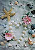 Interlitho, Erica, STILL LIFES, photos, shells, seastar, flowers(KL15937,#I#) Stilleben, naturaleza muerta