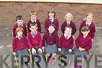 Pupils from Junior Infants, Glengort NS who started their school journey last Friday in Tournafulla.