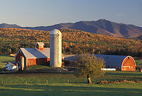 AJ4523, farm, barn, fall, autumn, Vermont, Scenic view of the red barn on Tinker Farm with Mount Mansfield in the background in the fall in Fletcher in Franklin County in the state of Vermont.