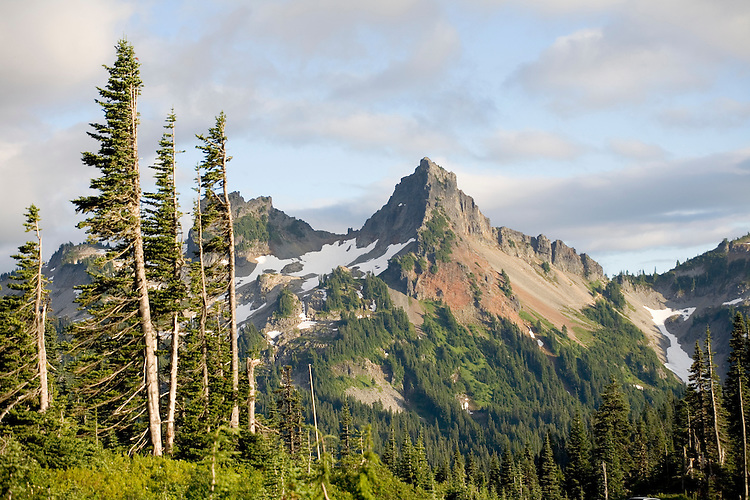 The Taboose Range as seen from the Paradise area of Mt Rainier NP