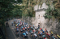 peloton up the Keizersberg<br /> <br /> 52nd GP Jef Scherens - Rondom Leuven 2018 (1.HC)<br /> 1 Day Race: Leuven to Leuven (186km/BEL)