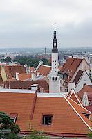 Aussicht vom Domberg in Tallinn (Reval), Estland, Europa, Unesco-Weltkulturerbe