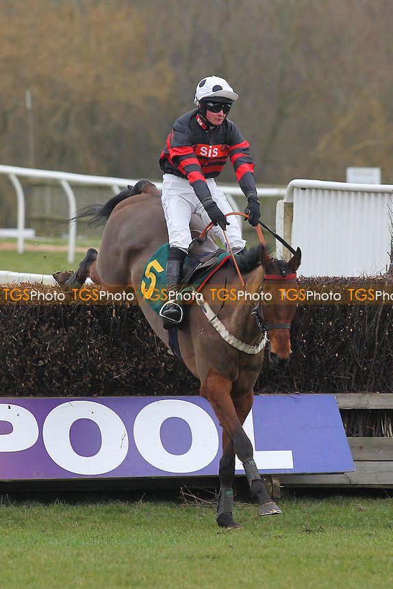 Monroe Park ridden by Jack Quinlan in jumping action in the Robert Case Memorial Novices Chase - Horse Racing at Fakenham Racecourse, Norfolk - 15/03/13 - MANDATORY CREDIT: Gavin Ellis/TGSPHOTO - Self billing applies where appropriate - 0845 094 6026 - contact@tgsphoto.co.uk - NO UNPAID USE.