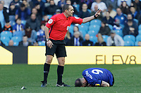 Referee Geoff Eltringham calls physiotherapists to see to Steven Fletcher of Sheffield Wednesday during the Sky Bet Championship match between Sheffield Wednesday and Swansea City at Hillsborough Stadium, Sheffield, England, UK. Saturday 23 February 2019