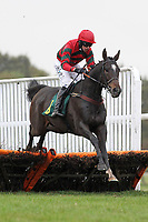 Staigue Fort ridden by Dominic Elsworth in jumping action during the Michael Scotney Memorial Novices Hurdle