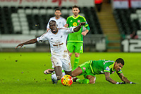 Modou Barrow of Swansea is brought down during the Barclays Premier League match between Swansea City and Sunderland played at the Liberty Stadium, Swansea on  January the 13th 2016
