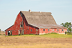 Red, weathered barn, rural Ill.