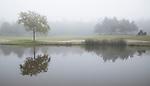 DEN DOLDER -   Golfsocieteit De Lage Vuursche. COPYRIGHT KOEN SUYK