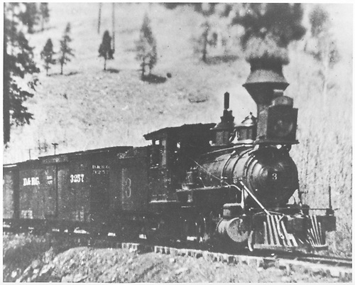 RGS 2-8-0 #3 with freight train approaching Millwood.<br /> RGS  Millwood, CO  post 1903