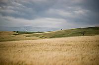 Campi di grano in Molise