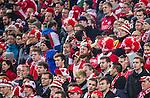Solna 2015-11-14 Fotboll EM-kval , Sverige - Danmark :  <br /> Danmarks supportrar ser nedst&auml;mda ut under matchen mellan Sverige och Danmark <br /> (Photo: Kenta J&ouml;nsson) Keywords:  Sweden Sverige Solna Stockholm Friends Arena EM Kval EM-kval UEFA Euro European 2016 Qualifying Qualifier Playoff Denmark Danmark supporter fans publik supporters depp besviken besvikelse sorg ledsen deppig nedst&auml;md uppgiven sad disappointment disappointed dejected