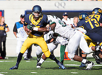 Saturday, September 7, 2013: Jared Goff tries to break a tackle from Portland State's lineman during a game at Memorial Stadium, Berkeley, California - California defeated Portland State 37 - 30