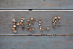 """Rocks spell out """"HELP"""" on a picnic table in the recess area of Amesville Elementary School in Amesville, Ohio."""
