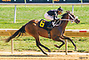 R Angel Katelyn winning at Delaware Park on 9/22/16
