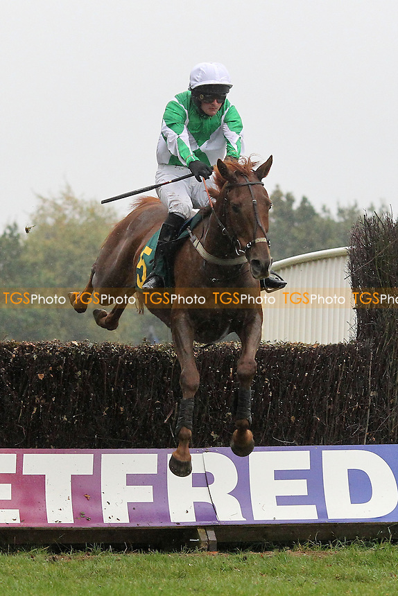 Race winner Full Ov Beans ridden by Mr N de Boinville in jumping action in the Half Term Racing, Fakenham 26th October Handicap Chase - Horse Racing at Fakenham Racecourse, Norfolk - 19/10/12 - MANDATORY CREDIT: Gavin Ellis/TGSPHOTO - Self billing applies where appropriate - 0845 094 6026 - contact@tgsphoto.co.uk - NO UNPAID USE